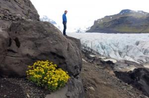 Stilleven bij Svinefjelsjökull