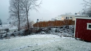 02 eerste sneeuw