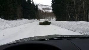 Obstakel op de weg