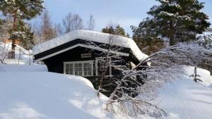 Jønsbu met een nieuwe laag sneeuw