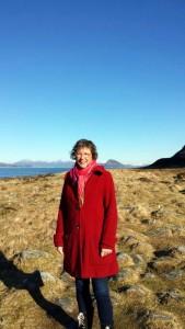 Ålesund op de achtergrond